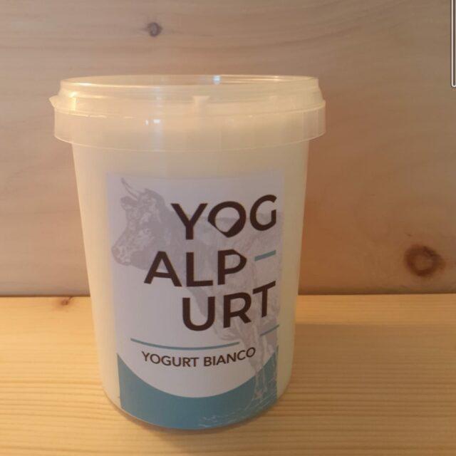 Yogurt bianco cremoso